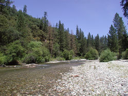 Bear_River_Campgrund_near_parking_2.JPG