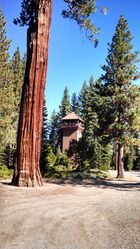 Ehrman_Mansion_Tower_(2).jpg