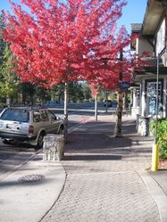 Tahoe_City_In_Fall.JPG