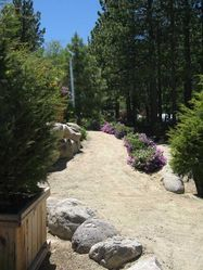 Tahoe_Tree_Nursery_(61).JPG