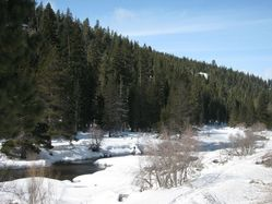 TruckeeRiver_covered.JPG