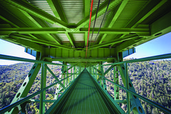 3_17_14_ForesthillBridge_057.Jpg