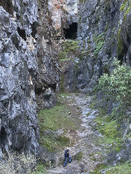 Cave_Valley__(17).JPG