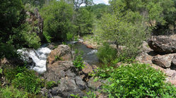 Creek_by_the_house_7.jpg