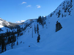 Snowy_Peak_with_trees_8_300dpi.jpg
